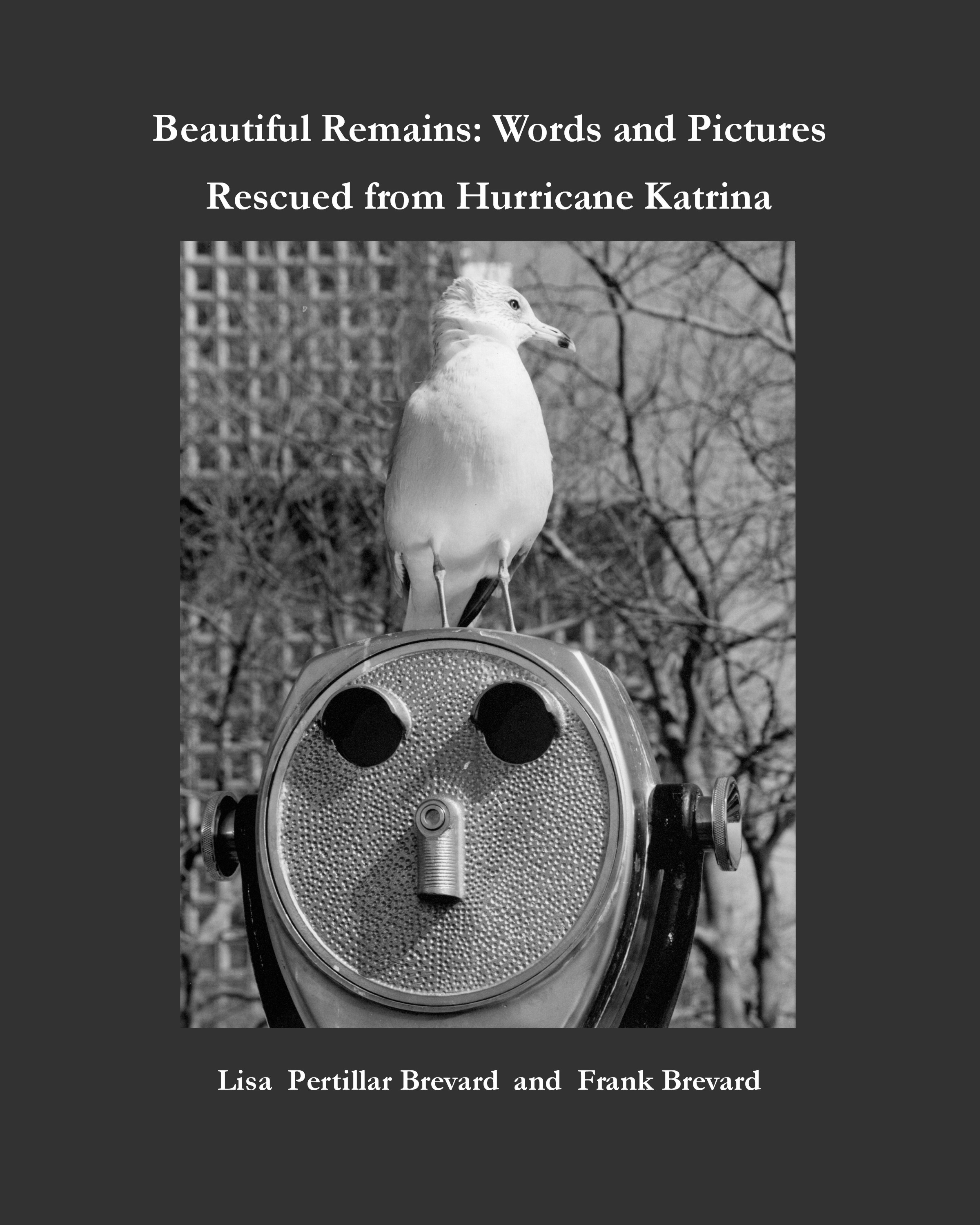 Beautiful Remains: Words and Pictures Rescued from Hurricane Katrina