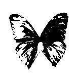 Click on Black Butterfly to return to Black Butterfly Records Home Page